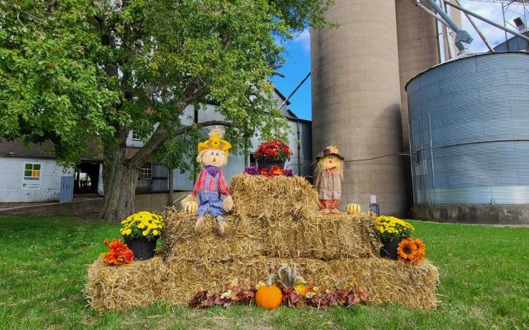 Fall Fest Display